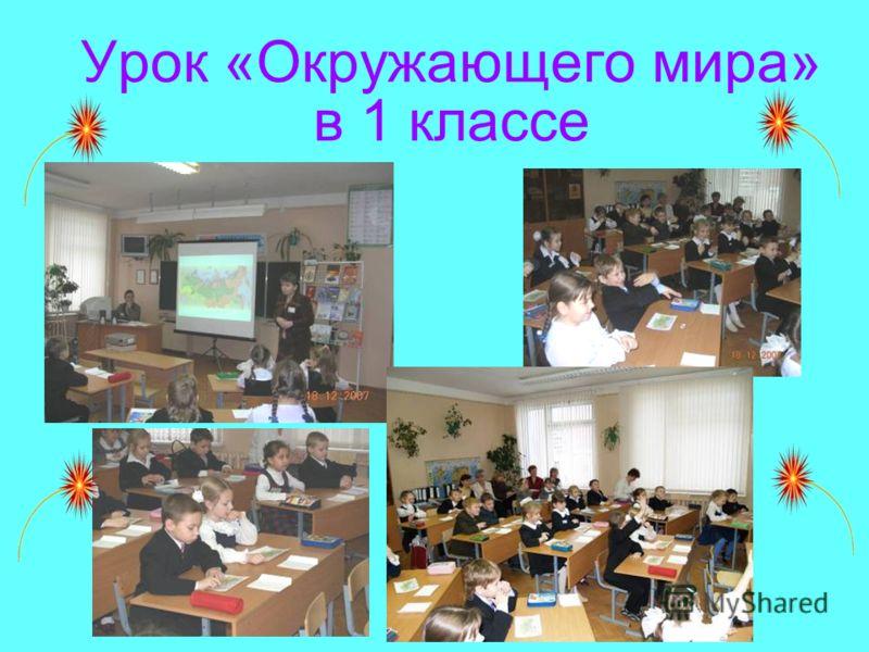 Урок «Окружающего мира» в 1 классе