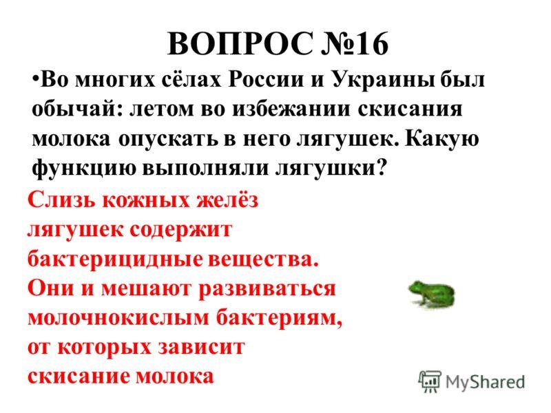 ВОПРОС 16 Во многих сёлах России и Украины был обычай: летом во избежании скисания молока опускать в него лягушек. Какую функцию выполняли лягушки? Слизь кожных желёз лягушек содержит бактерицидные вещества. Они и мешают развиваться молочнокислым бак