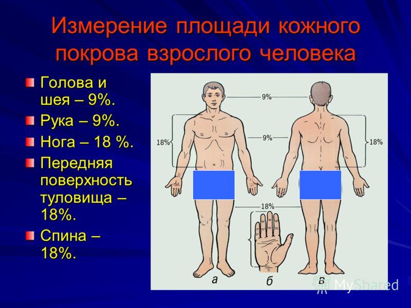 ПМП при ожогах По глубине поражения выделяют 4 степени: I степень - покраснение и отек кожи, II степень - на фоне покраснения и отека кожи образуются пузыри, наполненные жидкостью, III степень - некроз кожи, IV степень - некроз кожи и подкожной клетч