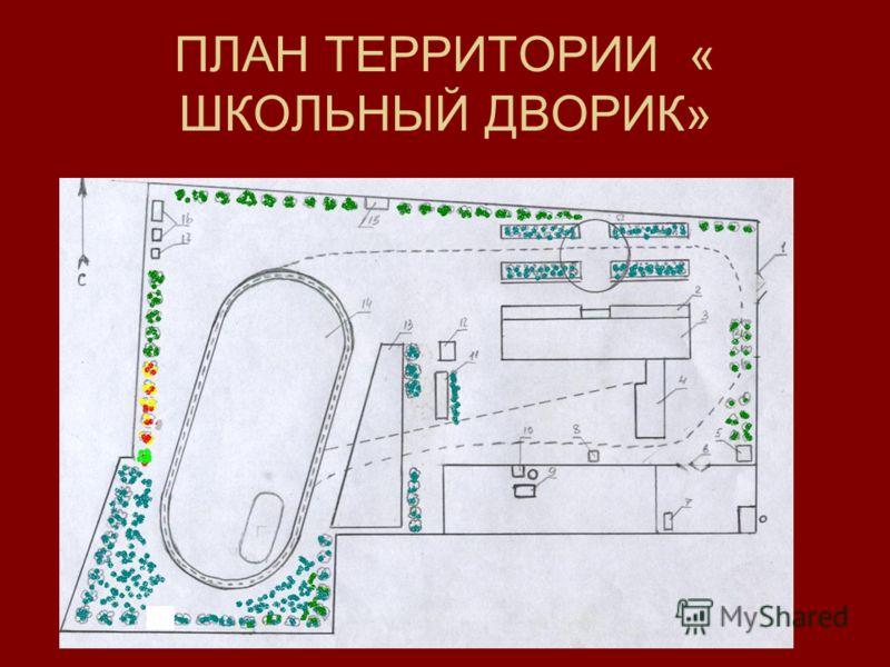 ПЛАН ТЕРРИТОРИИ « ШКОЛЬНЫЙ ДВОРИК»
