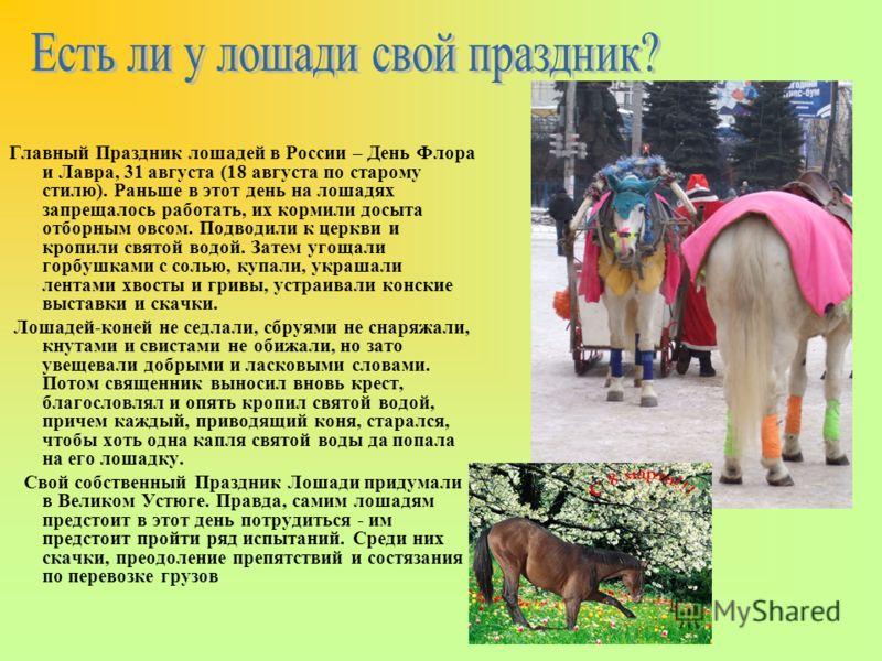 Главный Праздник лошадей в России – День Флора и Лавра, 31 августа (18 августа по старому стилю). Раньше в этот день на лошадях запрещалось работать, их кормили досыта отборным овсом. Подводили к церкви и кропили святой водой. Затем угощали горбушкам