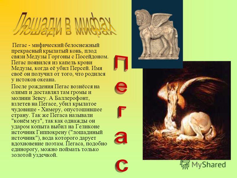 Пегас - мифический белоснежный прекрасный крылатый конь, плод связи Медузы Горгоны с Посейдоном. Пегас появился из капель крови Медузы, когда её убил Персей. Имя своё он получил от того, что родился у истоков океана. После рождения Пегас вознёсся на