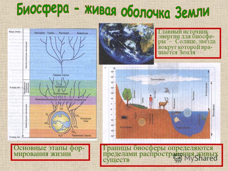 Основные этапы фор- мирования жизни Границы биосферы определяются пределами распространения живых существ Главный источник энергии для биосфе- ры – Солнце, звезда вокруг которой вра- щается Земля