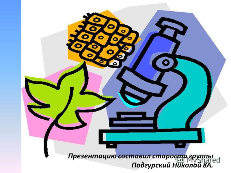 Презентацию составил староста группы Подгурский Николай 8А.