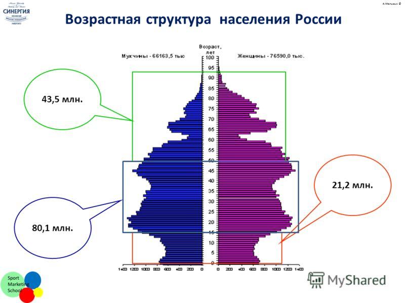 21,2 млн. Возрастная структура населения России 43,5 млн. 80,1 млн. А.Малыгин ©