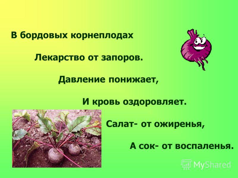В бордовых корнеплодах Лекарство от запоров. Давление понижает, И кровь оздоровляет. Салат- от ожиренья, А сок- от воспаленья.