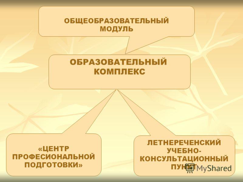 ОБЩЕОБРАЗОВАТЕЛЬНЫЙ МОДУЛЬ «ЦЕНТР ПРОФЕСИОНАЛЬНОЙ ПОДГОТОВКИ» ЛЕТНЕРЕЧЕНСКИЙ УЧЕБНО- КОНСУЛЬТАЦИОННЫЙ ПУНКТ ОБРАЗОВАТЕЛЬНЫЙ КОМПЛЕКС