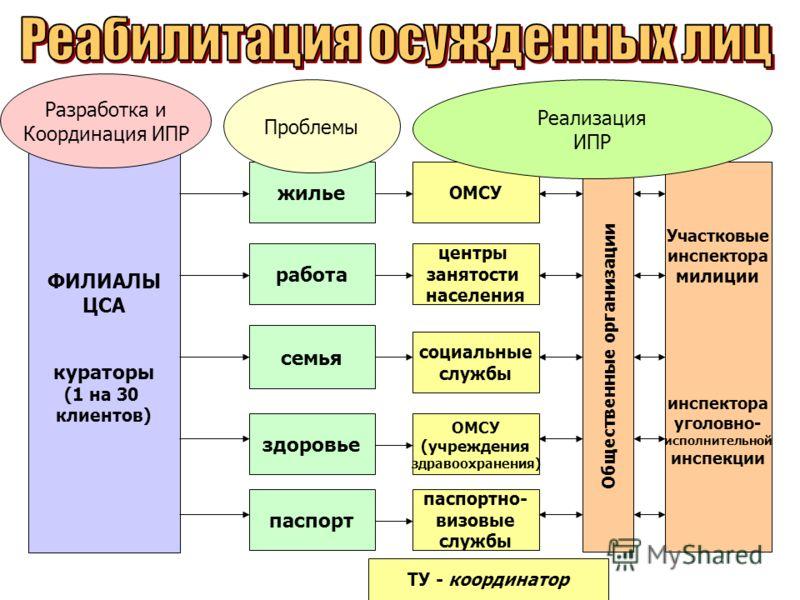 ИПР паспорт здоровье семья