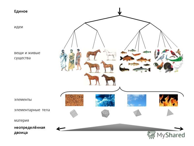 Единое идеи вещи и живые существа элементы элементарные тела материя неопределённая двоица