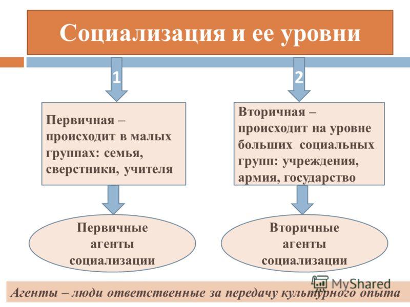 Социальные Нормы И Отклоняющееся Поведение Презентация