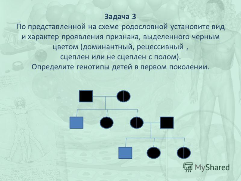 Задача 3 По представленной на схеме родословной установите вид и характер проявления признака, выделенного черным цветом (доминантный, рецессивный, сцеплен или не сцеплен с полом). Определите генотипы детей в первом поколении.