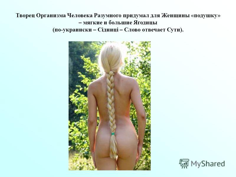 Творец Организма Человека Разумного придумал для Женщины «подушку» – мягкие и большие Ягодицы (по-украински – Сідниці – Слово отвечает Сути).