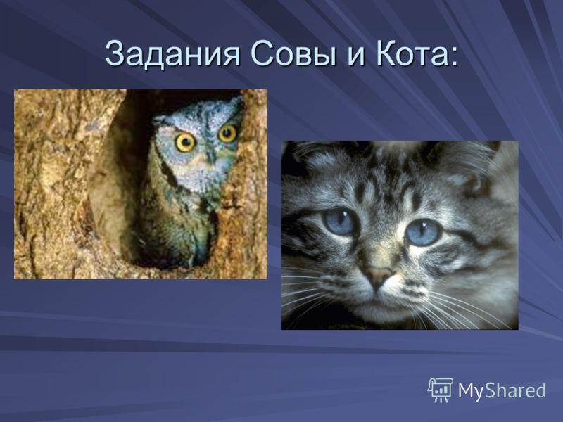 Задания Совы и Кота: