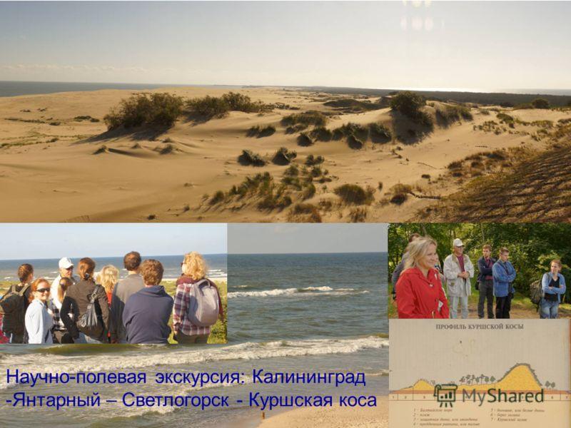 Научно-полевая экскурсия: Калининград -Янтарный – Светлогорск - Куршская коса
