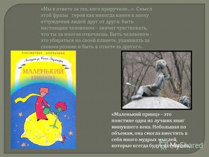 «Маленький принц» - это поистине одна из лучших книг минувшего века. Небольшая по объемам, она смогла вместить в себя много мудрых мыслей, которые всегда будут актуальны. «Мы в ответе за тех, кого приручили…». Смысл этой фразы героя как никогда важен