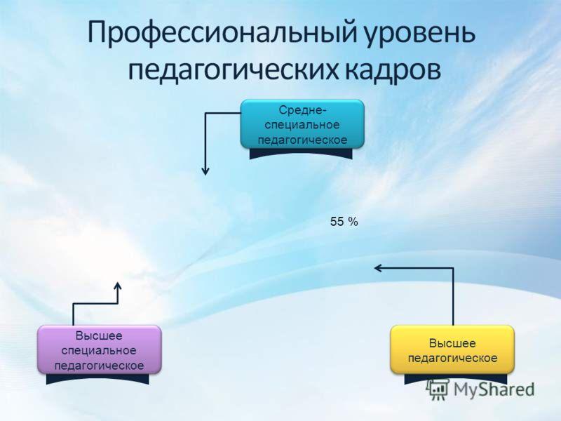 Высшее специальное педагогическое Высшее педагогическое Средне- специальное педагогическое 55 %