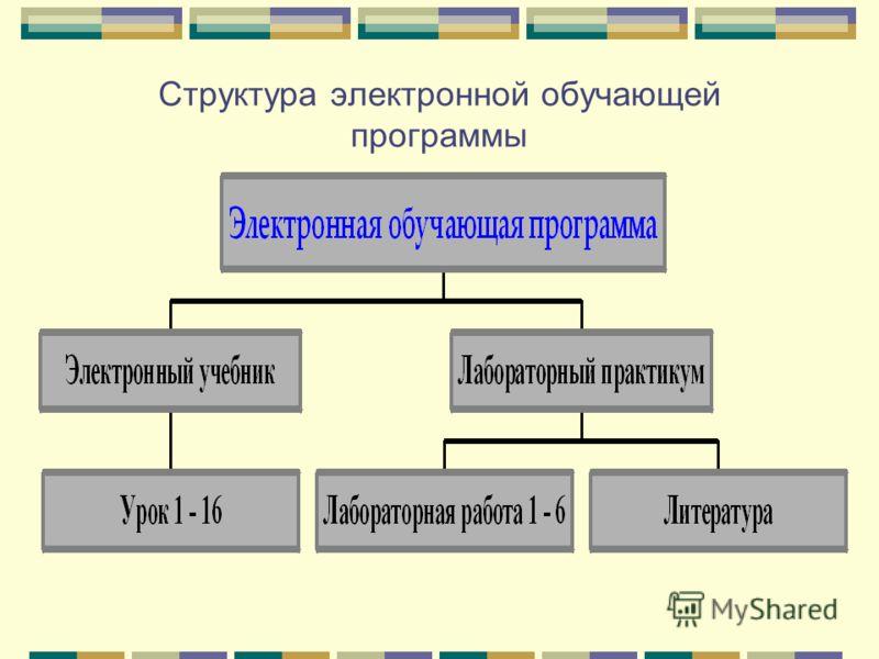 Структура электронной обучающей программы