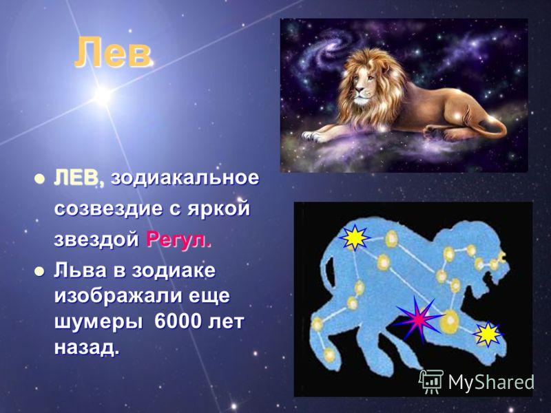Лев ЛЕВ, зодиакальное ЛЕВ, зодиакальное созвездие с яркой звездой Регул. Льва в зодиаке изображали еще шумеры 6000 лет назад. Льва в зодиаке изображали еще шумеры 6000 лет назад.