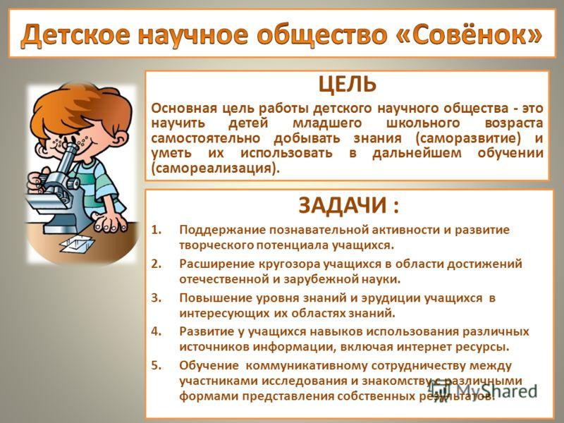 ЦЕЛЬ Основная цель работы детского научного общества - это научить детей младшего школьного возраста самостоятельно добывать знания (саморазвитие) и уметь их использовать в дальнейшем обучении (самореализация). ЗАДАЧИ : 1.Поддержание познавательной а