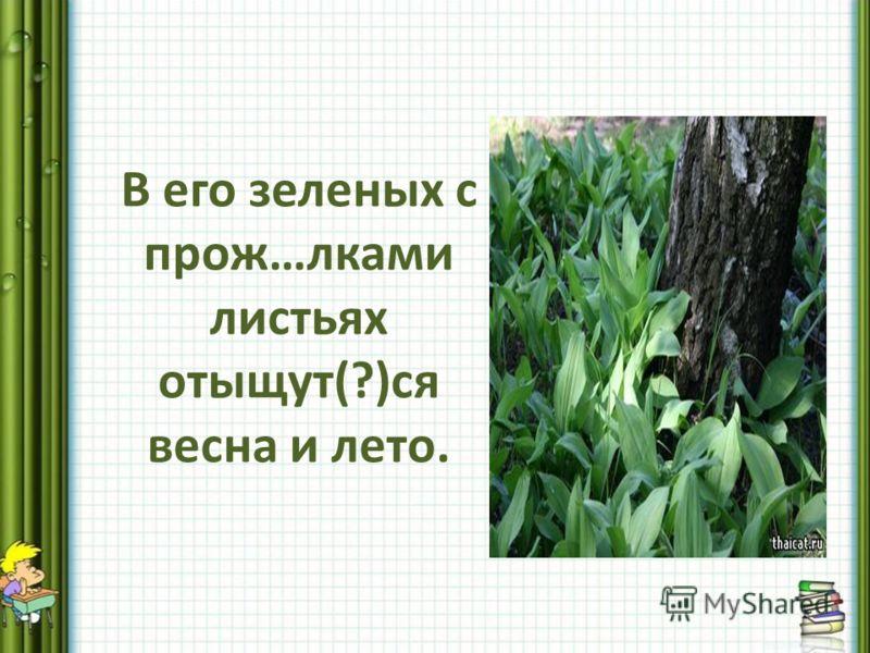 В его зеленых с прож…лками листьях отыщут(?)ся весна и лето.
