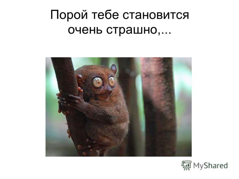 Порой тебе становится очень страшно,...