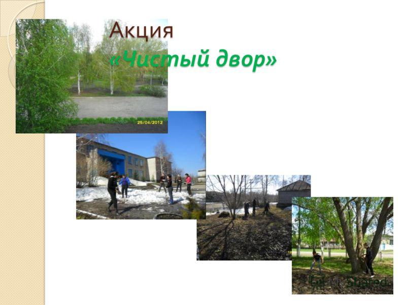 Акция « Чистый двор »
