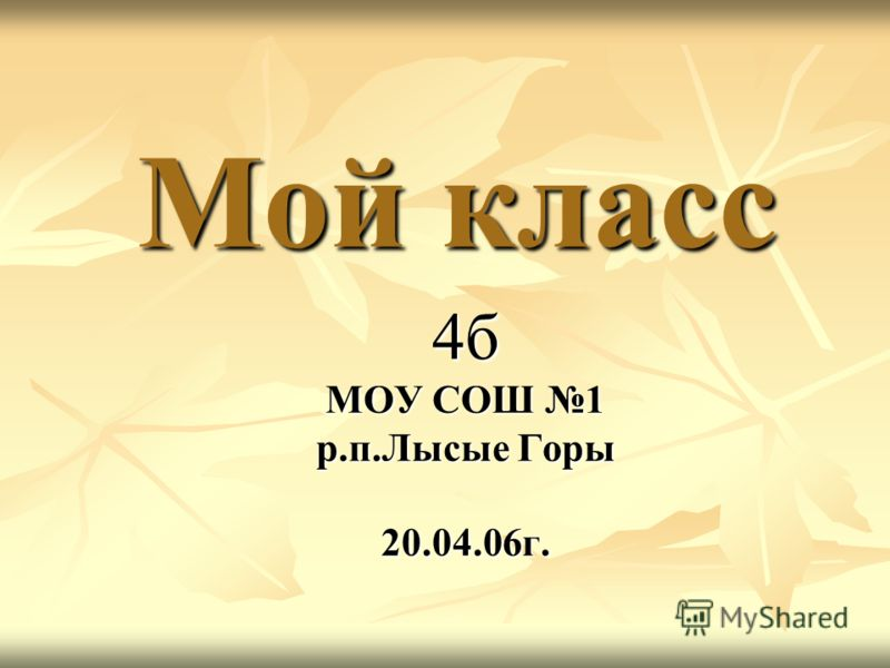 Мой класс 4б МОУ СОШ 1 р.п.Лысые Горы 20.04.06г.