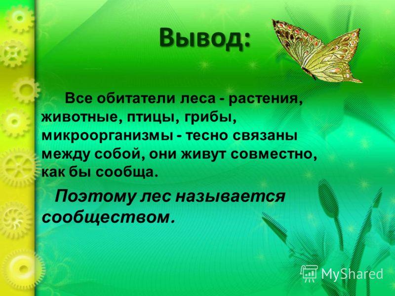 Вывод: Все обитатели леса - растения, животные, птицы, грибы, микроорганизмы - тесно связаны между собой, они живут совместно, как бы сообща. Поэтому лес называется сообществом.
