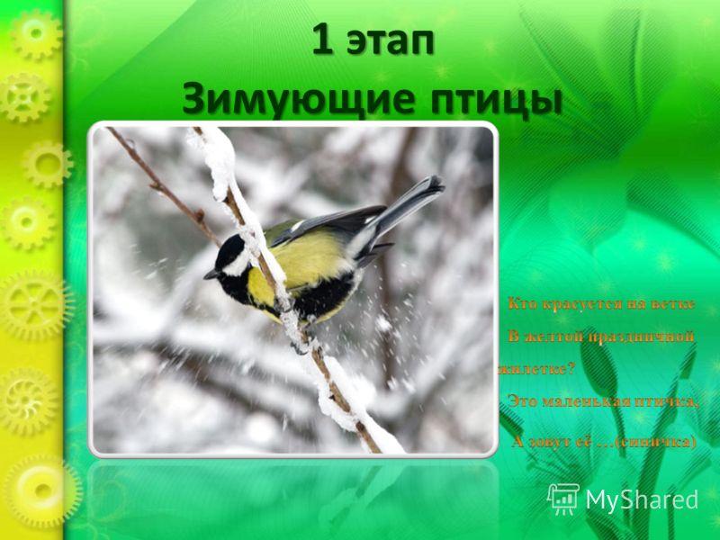 1 этап Зимующие птицы