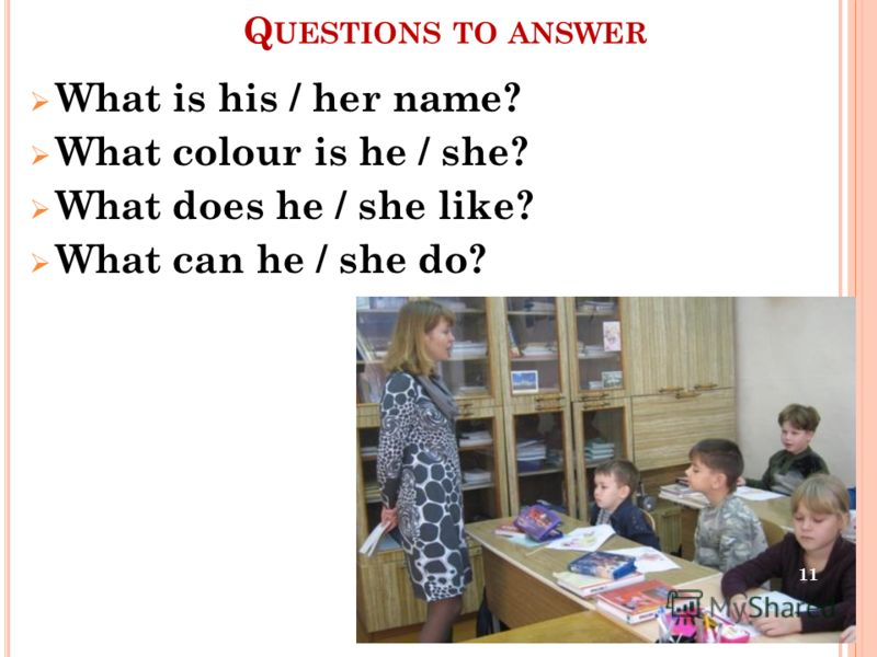 Q UESTIONS TO ANSWER What is his / her name? What colour is he / she? What does he / she like? What can he / she do? 11