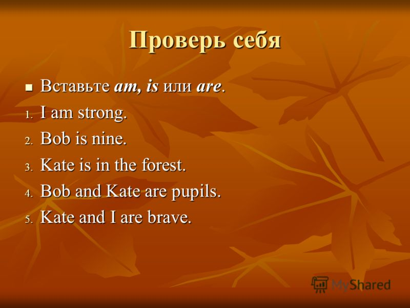 Проверь себя Вставьте am, is или are. Вставьте am, is или are. 1. I am strong. 2. Bob is nine. 3. Kate is in the forest. 4. Bob and Kate are pupils. 5. Kate and I are brave.