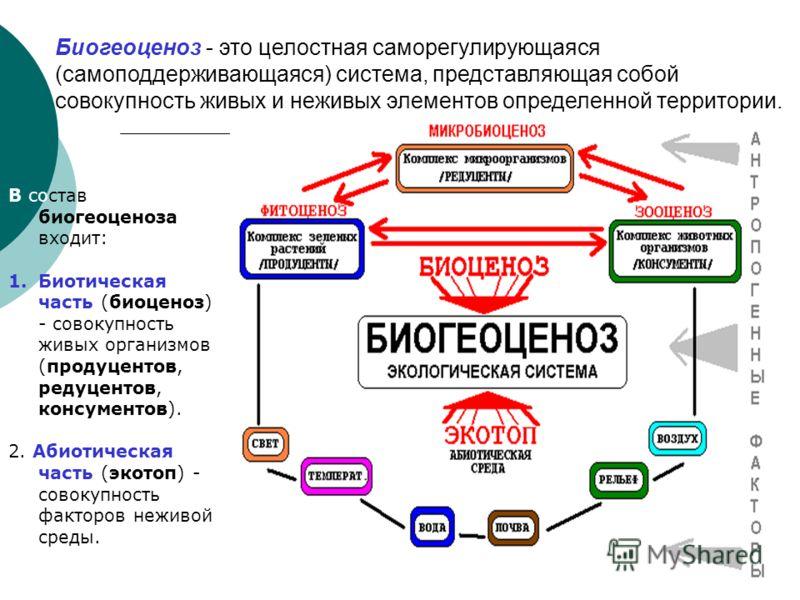 I. Основные понятия экологии Экология - наука, изучающая взаимоотношения между организмами и их взаимодействие с окружающей средой. Функциональной единицей биосферы является биогеоценоз. Биогеоценоз = в зарубежной литературе экологическая система.