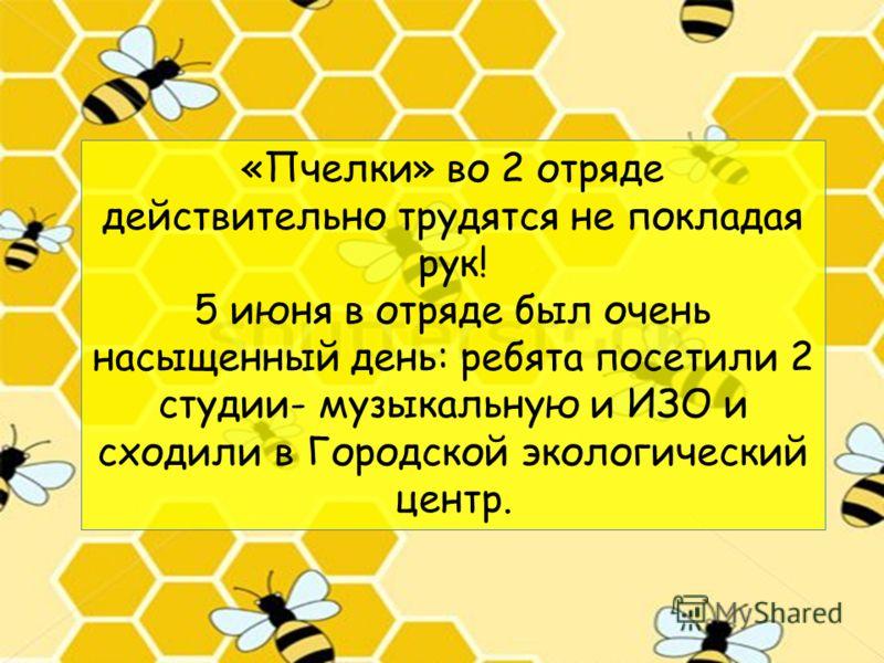«Пчелки» во 2 отряде действительно трудятся не покладая рук! 5 июня в отряде был очень насыщенный день: ребята посетили 2 студии- музыкальную и ИЗО и сходили в Городской экологический центр.