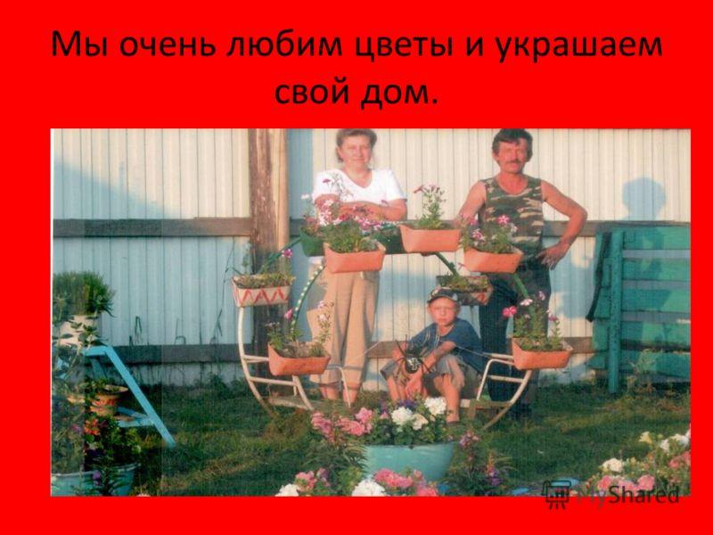 Мы очень любим цветы и украшаем свой дом.