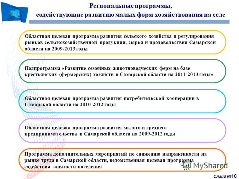 Слайд 10 Региональные программы, содействующие развитию малых форм хозяйствования на селе Программа дополнительных мероприятий по снижению напряженности на рынке труда в Самарской области, ведомственная целевая программа содействия занятости населени