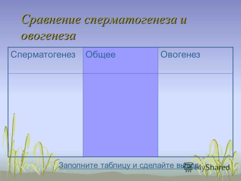 Сравнение сперматогенеза и овогенеза СперматогенезОбщееОвогенез Заполните таблицу и сделайте вывод.