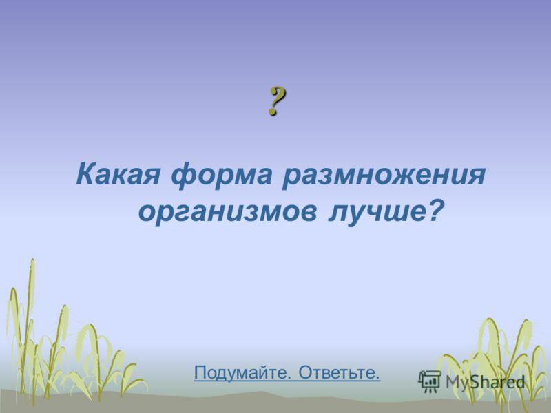 ? Какая форма размножения организмов лучше? Подумайте. Ответьте.