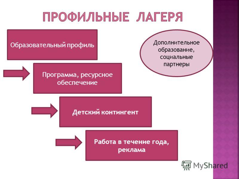 Образовательный профиль Программа, ресурсное обеспечение Детский контингент Дополнительное образование, социальные партнеры Работа в течение года, реклама