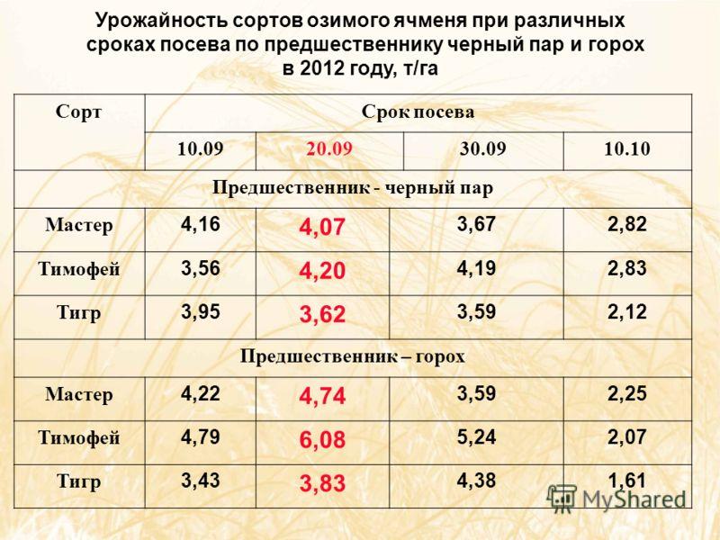 Урожайность сортов озимого ячменя при различных сроках посева по предшественнику черный пар и горох в 2012 году, т/га СортСрок посева 10.0920.0930.0910.10 Предшественник - черный пар Мастер 4,16 4,07 3,672,82 Тимофей 3,56 4,20 4,192,83 Тигр 3,95 3,62