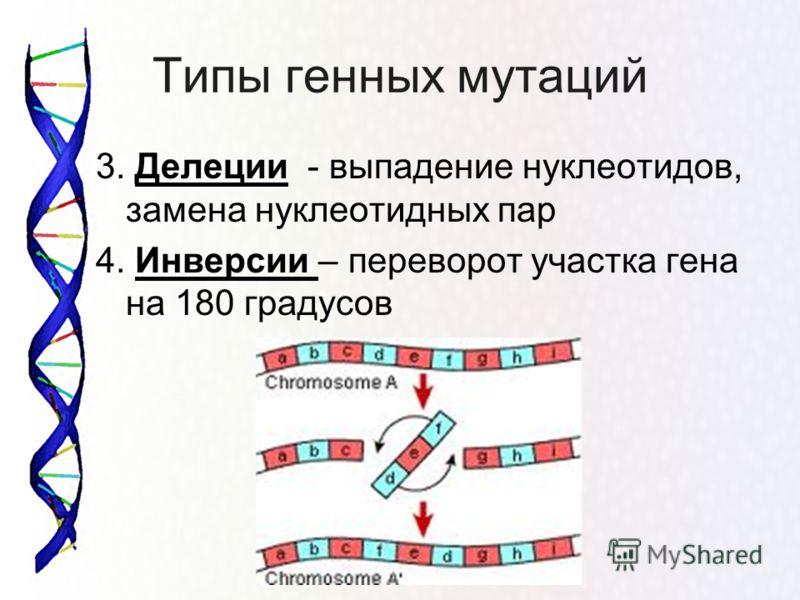 Типы генных мутаций 3. Делеции - выпадение нуклеотидов, замена нуклеотидных пар 4. Инверсии – переворот участка гена на 180 градусов