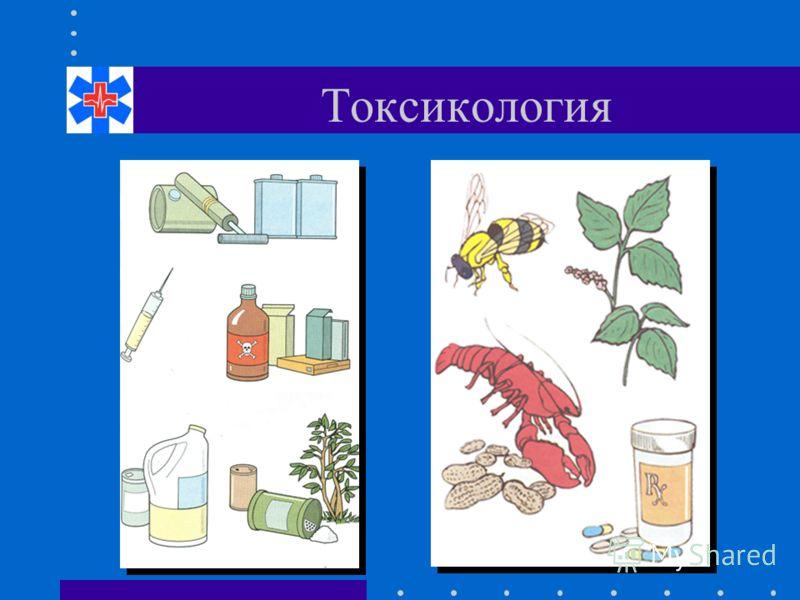 Токсикология фото