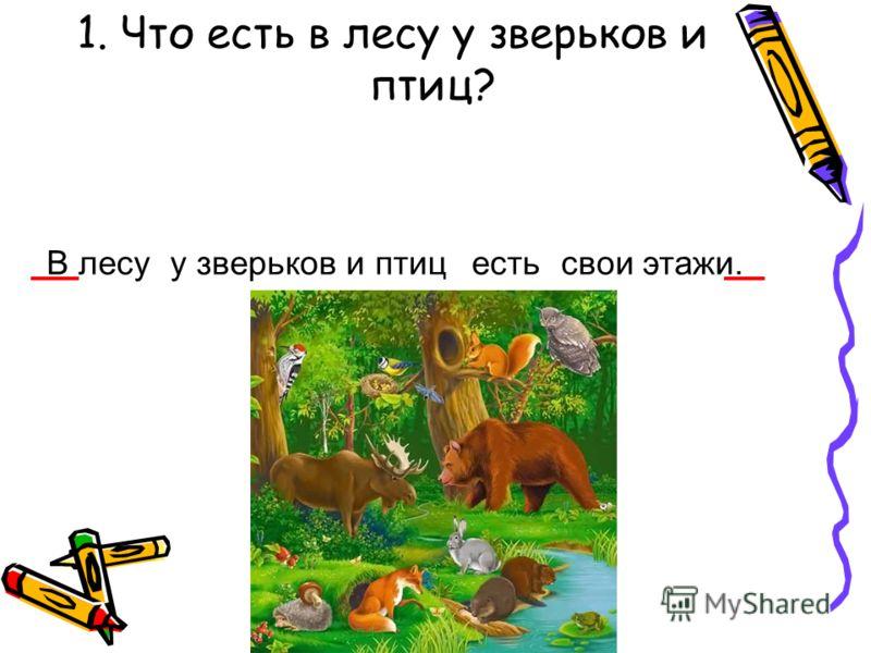 1. Что есть в лесу у зверьков и птиц? В лесуу зверьков и птицестьсвои этажи.