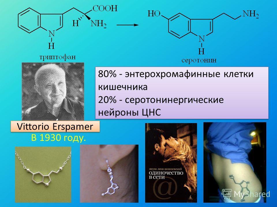 Vittorio Erspamer В 1930 году. 80% - энтерохромафинные клетки кишечника 20% - серотонинергические нейроны ЦНС 80% - энтерохромафинные клетки кишечника 20% - серотонинергические нейроны ЦНС