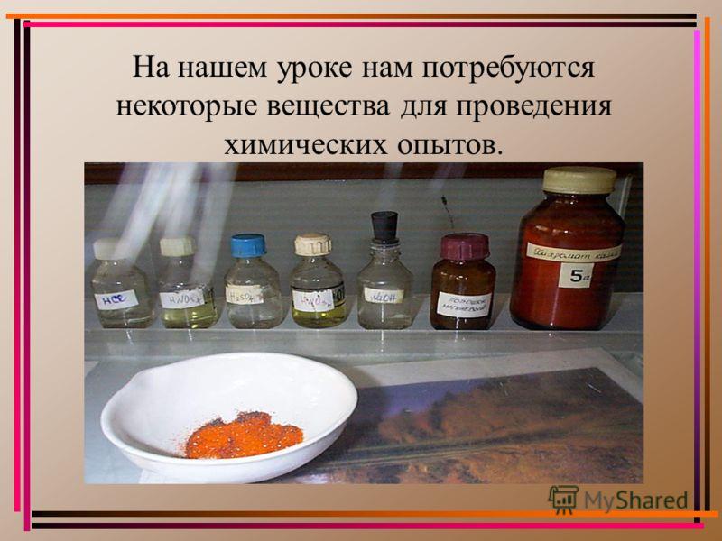 Святкина Анастасия и Чиркова Варвара