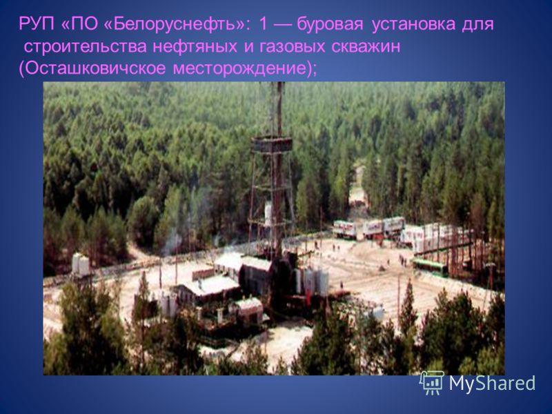 РУП «ПО «Белоруснефть»: 1 буровая установка для строительства нефтяных и газовых скважин (Осташковичское месторождение);