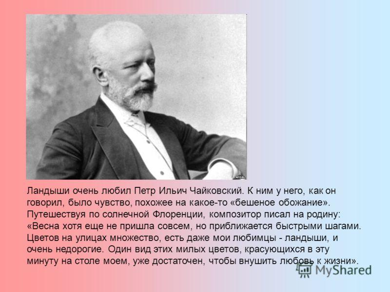 Ландыши очень любил Петр Ильич Чайковский. К ним у него, как он говорил, было чувство, похожее на какое-то «бешеное обожание». Путешествуя по солнечной Флоренции, композитор писал на родину: «Весна хотя еще не пришла совсем, но приближается быстрыми