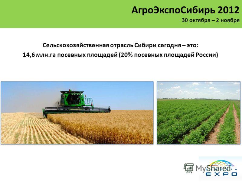 Сельскохозяйственная отрасль Сибири сегодня – это: 14,6 млн.га посевных площадей (20% посевных площадей России) АгроЭкспоСибирь 2012 30 октября – 2 ноября