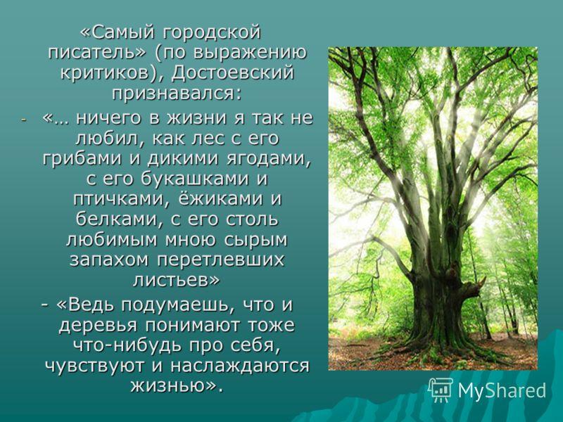«Самый городской писатель» (по выражению критиков), Достоевский признавался: «Самый городской писатель» (по выражению критиков), Достоевский признавался: - «… ничего в жизни я так не любил, как лес с его грибами и дикими ягодами, с его букашками и пт