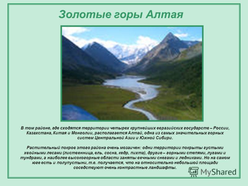 В том районе, где сходятся территории четырех крупнейших евразийских государств – России, Казахстана, Китая и Монголии, располагается Алтай, одна из самых значительных горных систем Центральной Азии и Южной Сибири. Растительный покров этого района оч