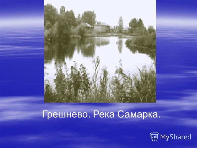 Грешнево. Река Самарка.
